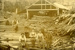 Photograph [Latta Bros mill, Katea]; [?]; 1899-1910; CT84.1659d
