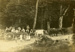 Photograph [Going picnicking]; [?]; c1890s; CT79.1026c