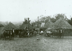 Photograph [Portable threshing mill]; [?]; early 20th century?; CT91.1005a