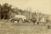 Photograph [Fraser's Milking Herd, Ratanui]; [?]; Early 20th century; CT82.1459e