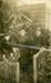 Photograph [Mr Geddes, Mrs Shaw, Mrs Fraser]; Eastes & Kerr, Owaka; [?]; CT4017.4