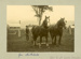 Photograph [James Mitchell and plough team]; Labatt, E A (Mrs); [?]; CT85.1711i