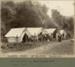 Photograph [Survey Camp, the Catlins, c1909]; [?]; c1909; CT79.1260a