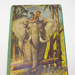 Book [In the Jungle]; Bancroft & Co Ltd; 1961; CT07.4733c