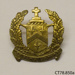 Badge, school; [?]; [?]; CT78.850a