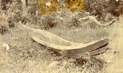 Photograph [Waka, Osborne's Hill]; [?]; [?]; 2010.585