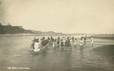 Photograph [The beach, Papatowai]; [?]; [?]; CT79.1251b6