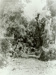 Photograph [Pounawea bush]; [?]; January 1910; CT89.1888.4