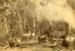 Photograph [Bushmen with a Steam Driven Log Hauler]; [?]; [?]; CT78.1002a.1