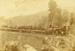 Photograph [First Passenger Train to Puketiro]; [?]; c1912; CT79.1099c