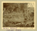 Photograph [Swing bridge, Catlins River]; Randall, George T (Mr); [?]; CT79.1028b