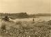 Photograph [Catlins Bridge]; Williams, W (Mr); c Early 1900s; CT79.1076e