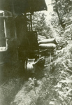 Photograph [Rail-tractor]; [?]; c1950; CT86.1832a4