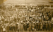Photograph [Peace Day celebrations, Owaka]; [?]; 19.07.1919; CT79.1055c