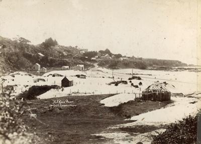 Photograph [Kaka Point]; Randall, George T; [?]; CT79.1290c
