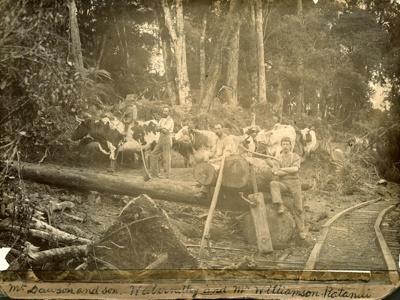 Photograph [Bushmen in the Catlins Bush]; [?]; c1900; 2010.652