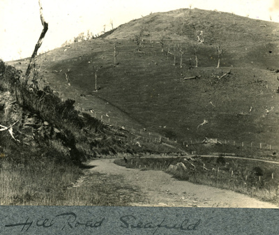 Photograph [Hill Road, Seafield]; [?]; [?]; CT84.1677f2