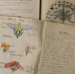 Arthur Stoddart's exercise Books, Owaka District High School, 1948-1950; Stoddart, Arthur; 1948-1950; CT01.3085