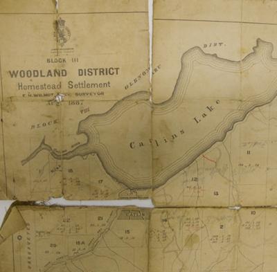 Map, Catlins, 1887; Wilmot, E H; 1887; 2010.429.21