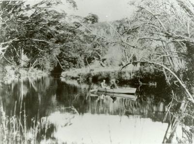 Photograph [Upper Catlins River, 1901]; [?]; 1901; CT89.1888.10