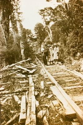 Photograph [Mr and Mrs Roxburgh]; [?]; 20th century; CT86.1836c