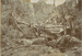 Photograph [Bush Workers, Cannibal Bay, The Catlins]; [?]; 1893; CT83.1114c