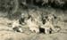 Photograph [Bible Class Picnic]; [?]; c1920s; CT90.1757m