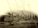 Photograph [Logs on Trolleys, Sawmill, The Catlins]; Labatt, E A (Mrs); Early 1900s; CT78.1012