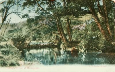 Photograph [Catlins River at Houipapa]; [?]; [?]; CT85.1740b2