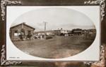 Photograph [Main Rd, Owaka]; Muir & Moodie; early 1900s; 2010.783.11