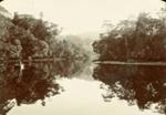Photograph [Owaka River]; [?]; [?]; CT96.2075.4