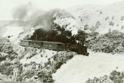 Photograph [Train Approaching Tunnel, Owaka]; [?]; 14.01.1958; CT78.1007a.21