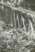 Photograph [Tramway bridge]; McTainsh, A Ernest; [?]; CT84.1666a