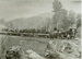 Photograph [First Passenger Train to Puketiro]; [?]; 1912; CT78.1007a.9