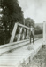 Photograph [Lauriston Timber Co, Tramline]; [?]; Early 1900s; CT78.1008a.3