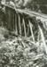 Photograph [tramway bridge]; [?]; [?]; CT86.1832a2