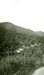 Photograph [Goss's Huts at theSawmill]; [?]; [?]; CT84.1651f