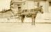 Photograph [Owaka Post Office]; [?]; [?]; CT89.1899a1