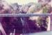 Photograph [Disused Railway Cutting, Puketiro]; [?]; [c1970s?]; CT83.1639i