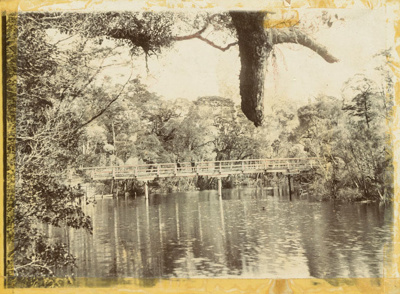 Photograph [Stock bridge, Maclennan River]; [?]; [?]; CT79.1013b