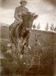 Joyce Wharfe on calf.; 16-270