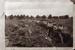 Gumdiggers on Mangawai Flats; 16-336