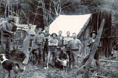 Mooney's Timber Operation.; 16-292