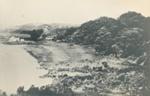 Mangawai Beach 1864; 16-22