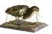 Bird - Bittern or Matuku; 661