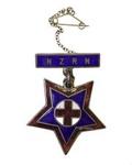 Badge; 15-15