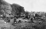 Gum Digging in Mangawai; 16-66