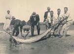 Wintle Family with Swordfish.; 16-89