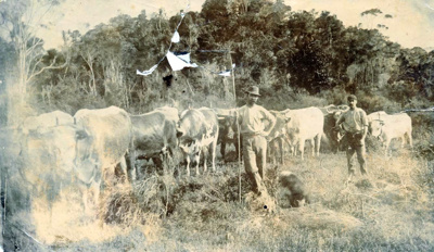 Mooney Bullock Team; 16-332