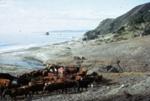 Feeding Cattle on Bream Tail Farm; 18-103